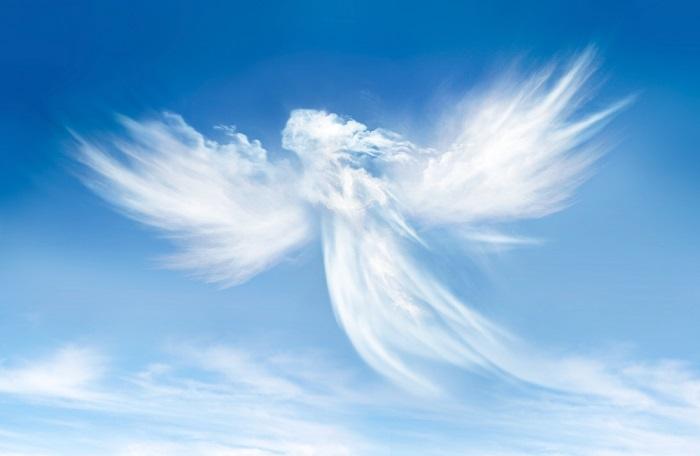 Lettere al direttore: gli Angeli custodi